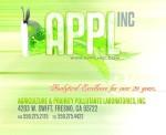 applefish2 copy-1