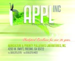 applefish2 copy