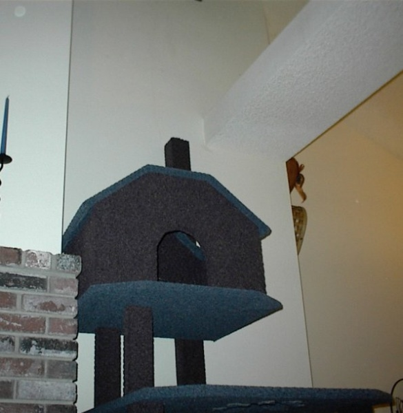"Cat house and ledge of house. That ledge goes across the entire livingroom. It's one of those ""planter ledge"" thingies... So he'll be able to jump up there and peer down on us peons when watching movies or are in the living room!:"