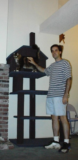 Jeremy (Who Dah?), Big Kitty, and overall picture. I'm 6 foot, the ledge he'll be able to get to is about 10 feet. I'm standing in front of the thing so the cat tree looks smaller.. See that folding chair in the background right past my leg? That is right next to it to give you perspective. Big Kitty doesn't look so bit in this shot either! Again you can see the ledge on the top where he'll be able to get to. Oh, and I'm not flipping you all off or anything.. I cut my finger doing something STUPID w/ the drill while mounting this thing.. So it has one of those plastic things on it w/ tape around it! I had to attach the cat house inside. The base of the tree BARELY fit in the door.. And I mean we pushed it through and there are blue/purple marks on my walls now.. heeh!:
