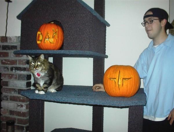 What Dah? & Big Kitty & Pumpkins