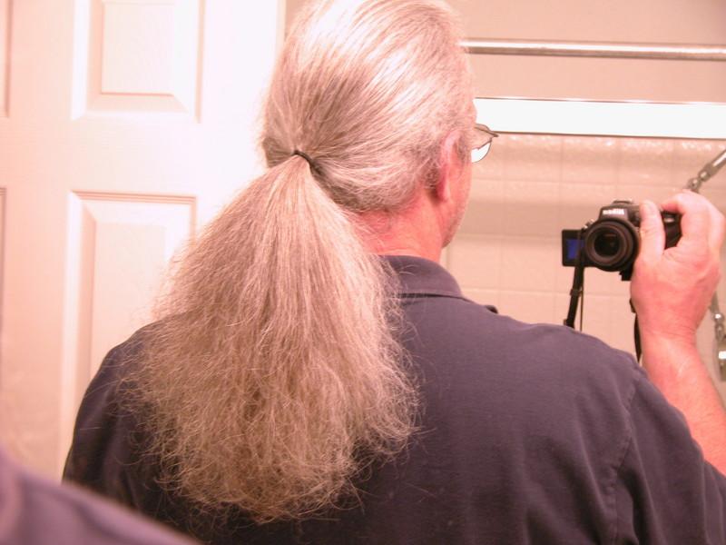 ponytail2
