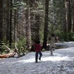 Highlight for Album: Yosemite Pics