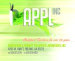 applefish2 copy