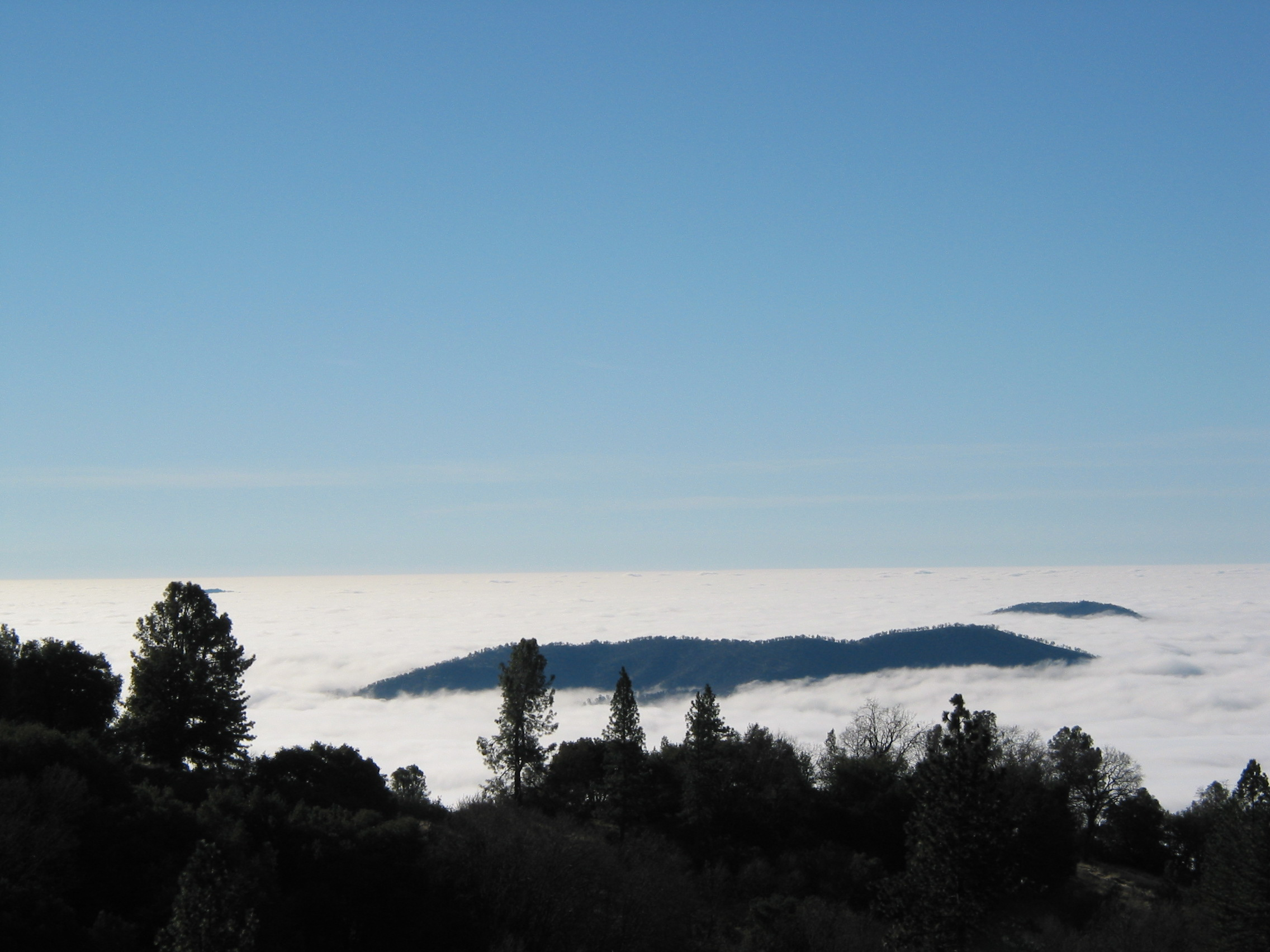 A pic of the clouds we rose above =) {WhatDah likes photography} >:)