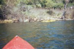 More kayaking shots.